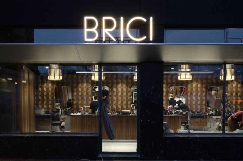 corvin cristian | BRICI