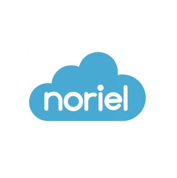 corvin cristian | noriel